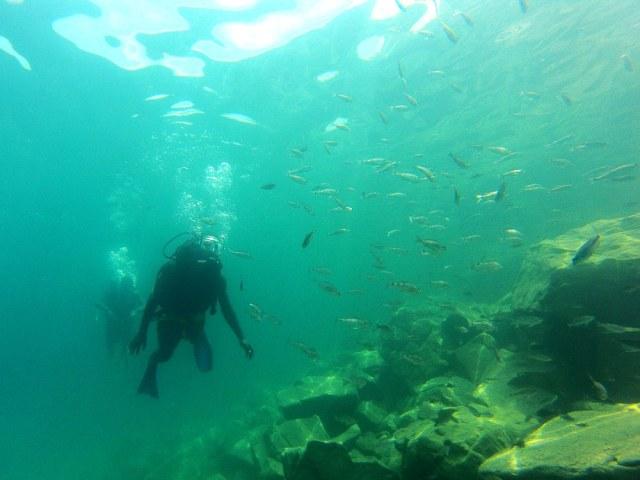 scubaDivers1small